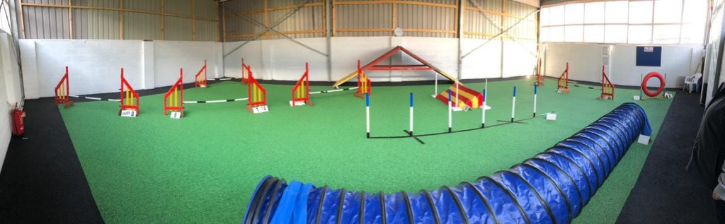 Agility Course for dogs